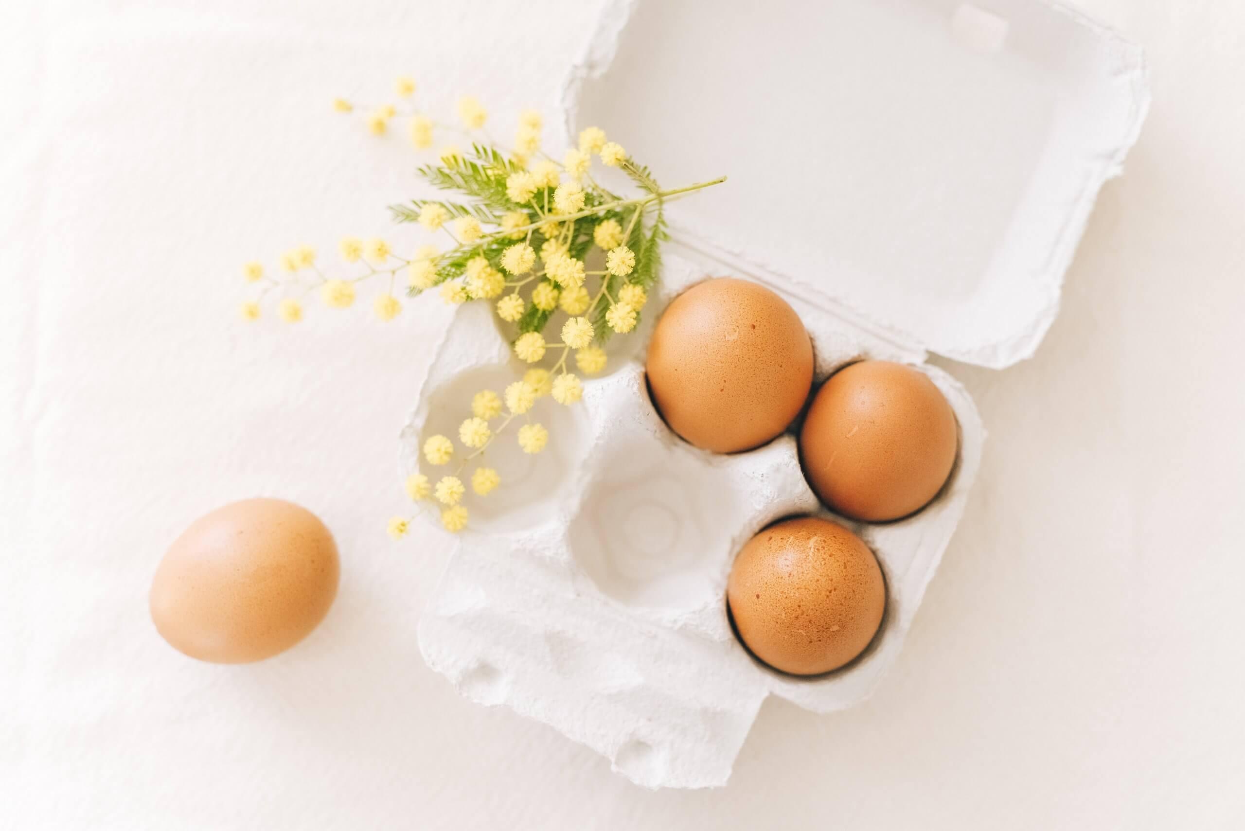 présentation œufs mimosa